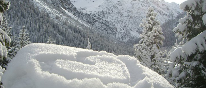 Snowboard Girls